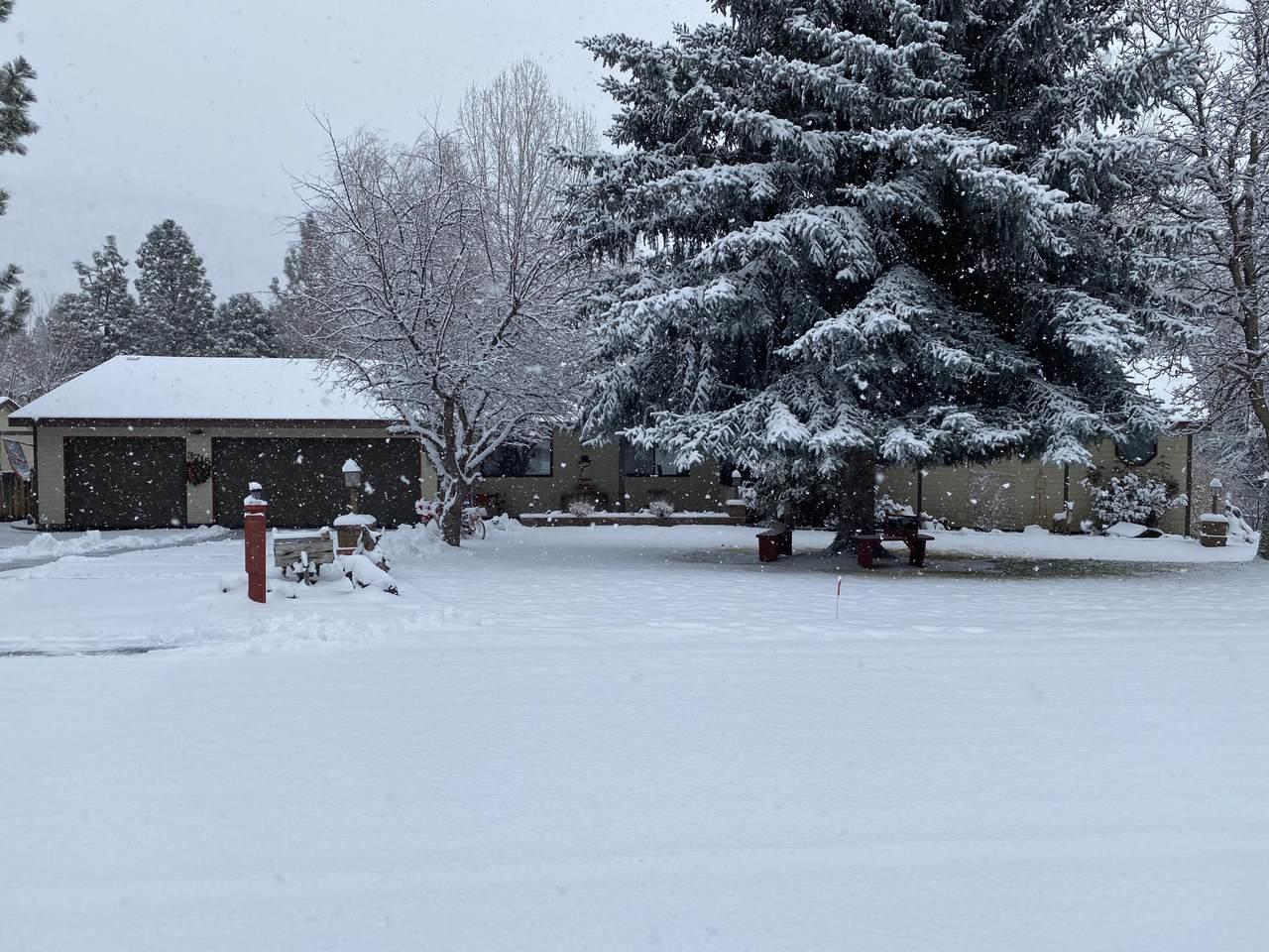 3715 Plum Bush Drive - Photo 1