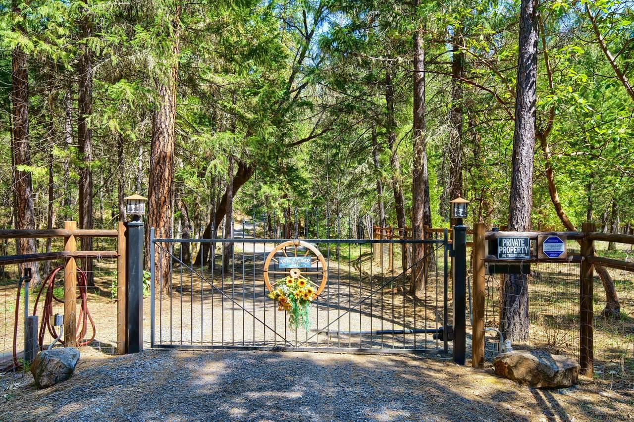 3700 Pleasant Creek Road - Photo 1