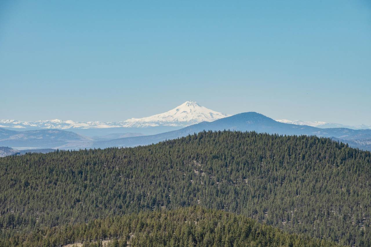 27850 Old Wolf Creek Road - Photo 1