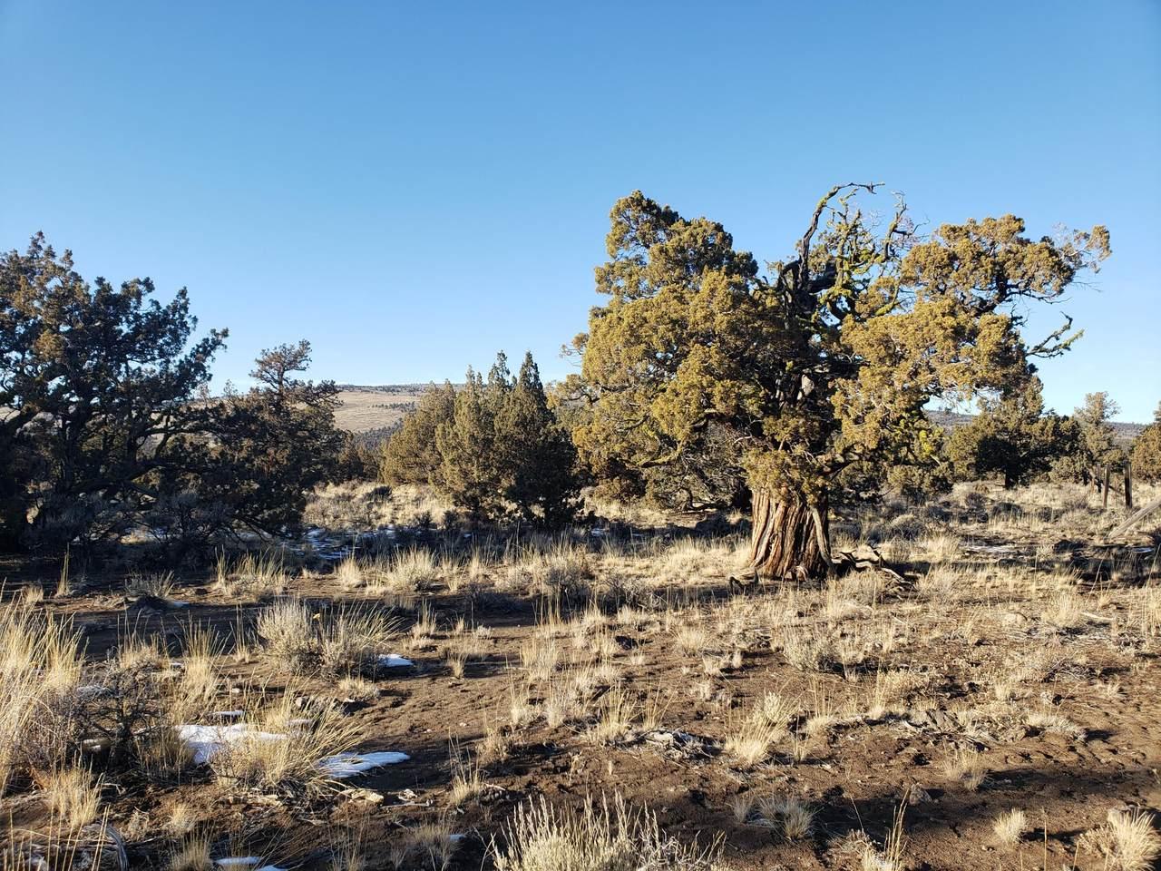 3700 Golden View Ranch - Photo 1