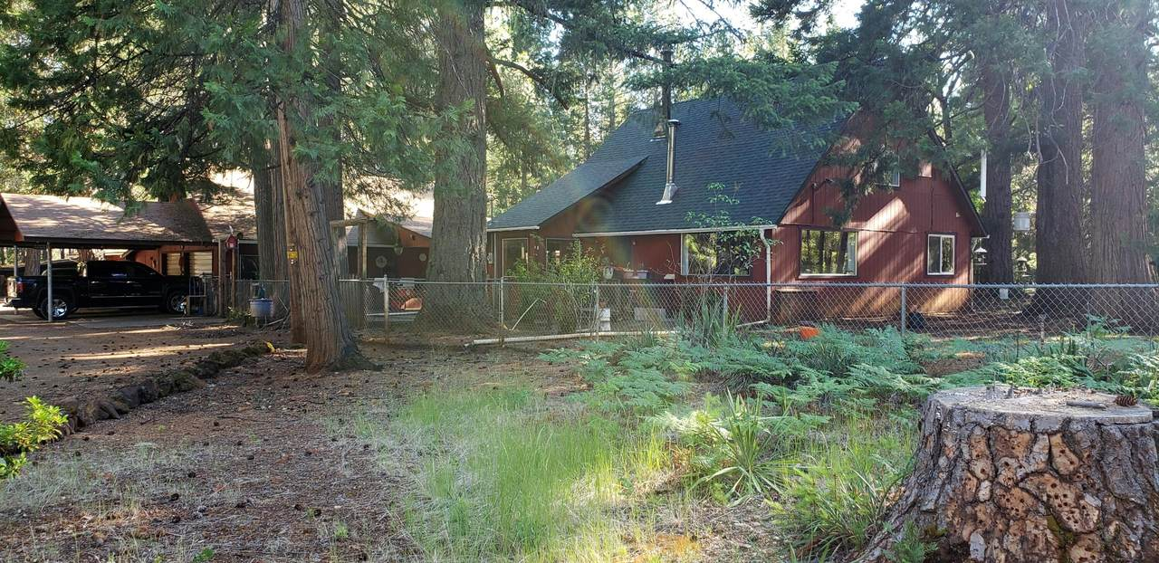 1200 Rough And Ready Creek Road - Photo 1