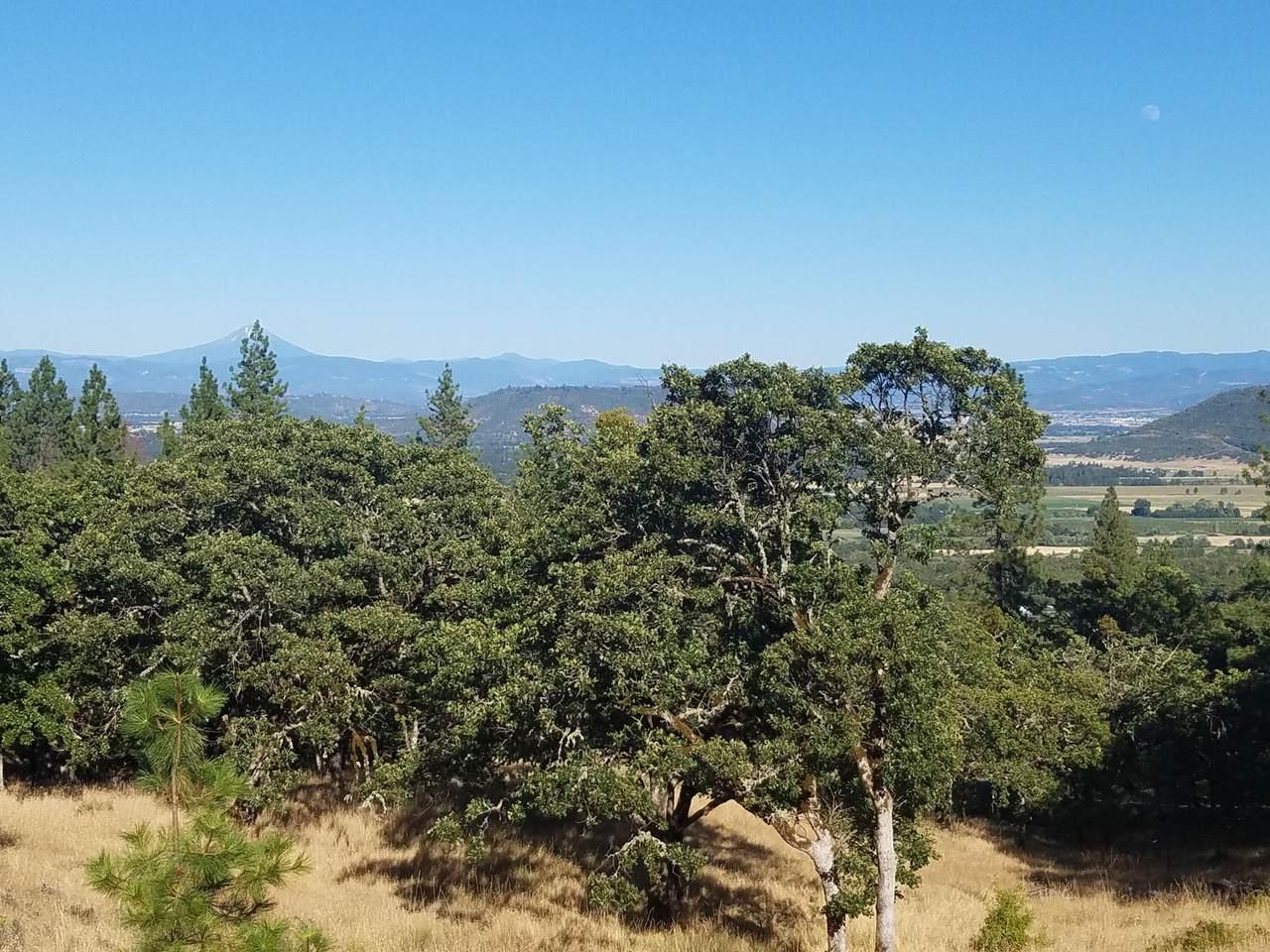 1214 Overlook Drive - Photo 1
