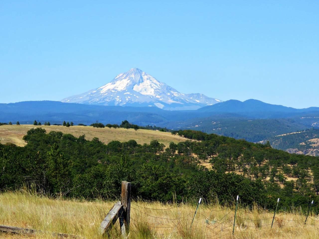 4999 Pleasant Ridge Road - Photo 1