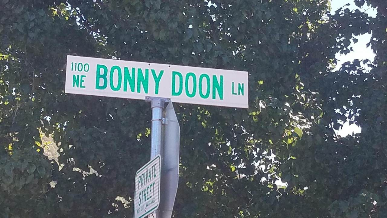 1184 Bonny Doon Lane - Photo 1