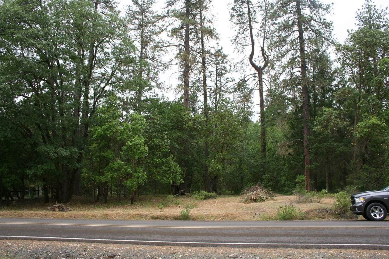 0 Castle Creek Road - Photo 1