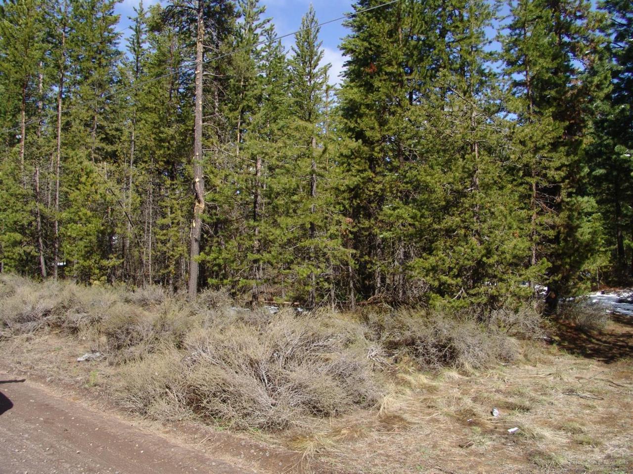 15680 Park Drive, La Pine, OR 97739 (MLS #201603271) :: Birtola Garmyn High Desert Realty