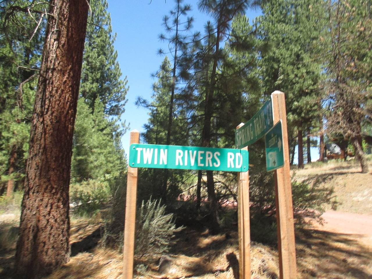 Lot 5 Twin River Drive - Photo 1