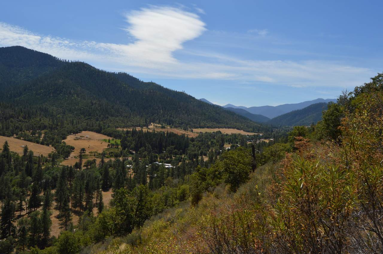550 Thompson Creek Road - Photo 1