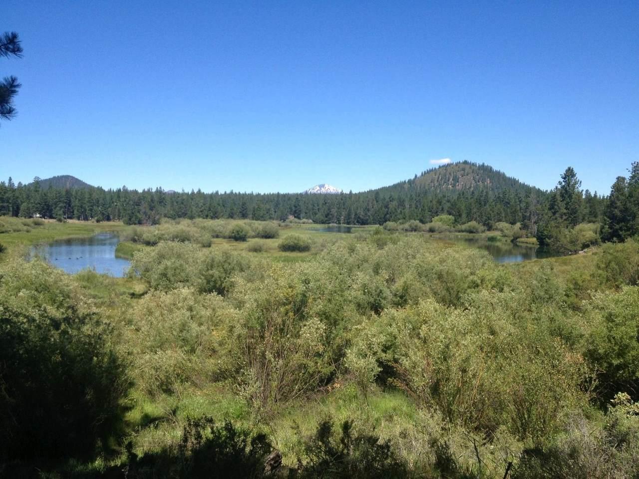 16434 Antelope Drive - Photo 1