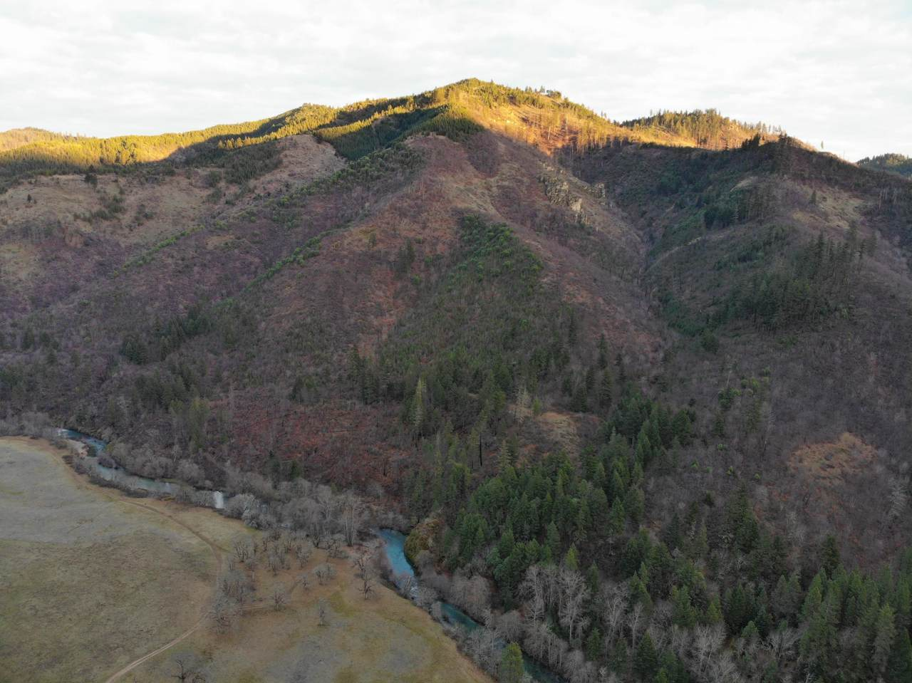 0 Elk Creek Road - Photo 1