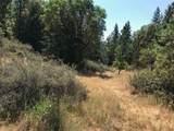 5033 Sterling Creek Road - Photo 13