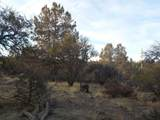 0 Ground Squirrel Lot 18 Drive - Photo 2