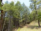 0 Ditch Creek Lot 205 Road - Photo 10