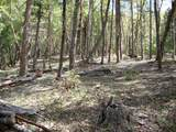 0 Ditch Creek Lot 205 Road - Photo 3