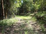 0 Ditch Creek Lot 205 Road - Photo 4