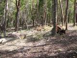 0 Ditch Creek Lot 205 Road - Photo 5
