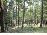 0 Ditch Creek Lot 205 Road - Photo 6