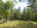 0 Ditch Creek Lot 205 Road - Photo 9