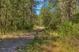 25572 Highway 62 - Photo 19