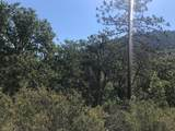 540 Greens Creek Road - Photo 4
