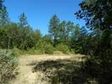 120 Arbor Ridge - Photo 3