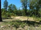120 Arbor Ridge - Photo 8