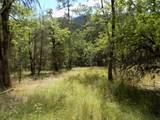 0 Ditch Creek Tl204 Road - Photo 3