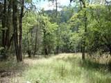 0 Ditch Creek Tl204 Road - Photo 7