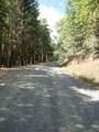 0 Ditch Creek Tl204 Road - Photo 9