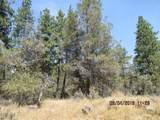 0 Meadow Lark Drive - Photo 6