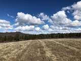 2913 Running Deer Lane - Photo 1