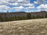 2913 Running Deer Lane - Photo 6