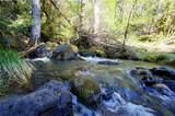 1555 Page Creek Road - Photo 20