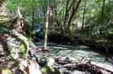 1555 Page Creek Road - Photo 23