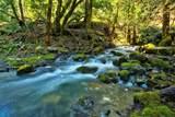1555 Page Creek Road - Photo 4