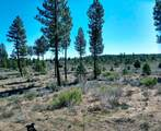 150 Skeen Ranch Rd - Off - Photo 20