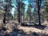 150 Skeen Ranch Rd - Off - Photo 22
