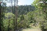 500 Shorthorn Gulch Road - Photo 1