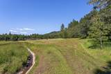 4130 Thompson Creek Road - Photo 5