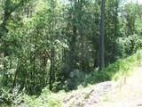 0 Evans Creek Road - Photo 3