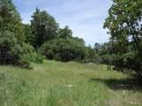 2562 Sterling Creek Road - Photo 10