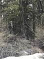 0 Elk Lane - Photo 7