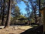 252 Ewe Creek Road - Photo 5
