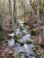 810 Savage Creek Road - Photo 35