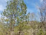 TL600 Elk Creek Road - Photo 12