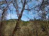 TL600 Elk Creek Road - Photo 5