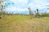 0 Wren Ridge Tl 8000 Drive - Photo 3