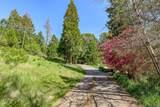 1548 Savage Creek Road - Photo 28