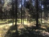 54645 Gray Squirrel Drive - Photo 1