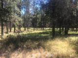 54645 Gray Squirrel Drive - Photo 2
